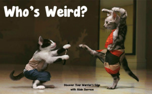 Karate Cats Who's Weird